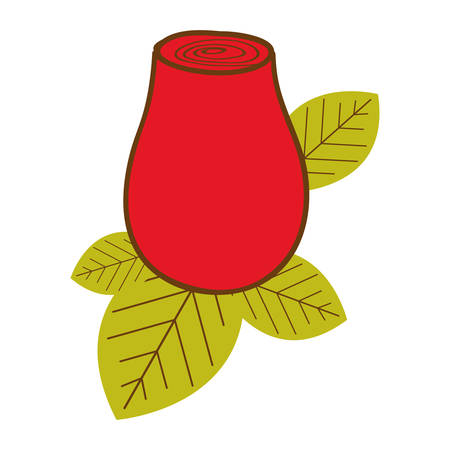 colorful drawing red rosebud with leaves closeup vector illustration Illustration
