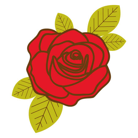 colorful flowered red rose with leaves closeup vector illustration