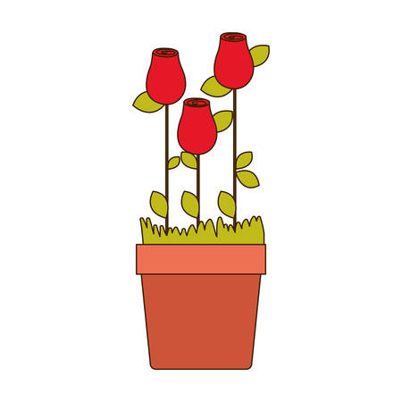 colorful rosebuds planted with leaves in flowerpot vector illustration