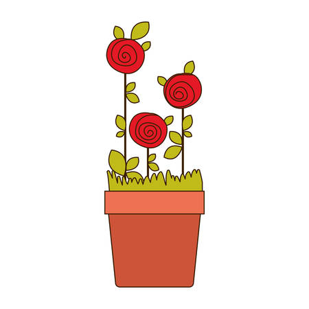 colorful drawing roses planted with leaves in flowerpot vector illustration Illustration