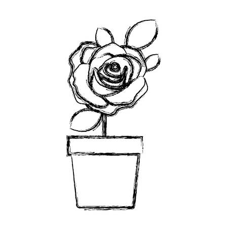 blurred silhouette flowered rose with leaves and stem in flowerpot vector illustration