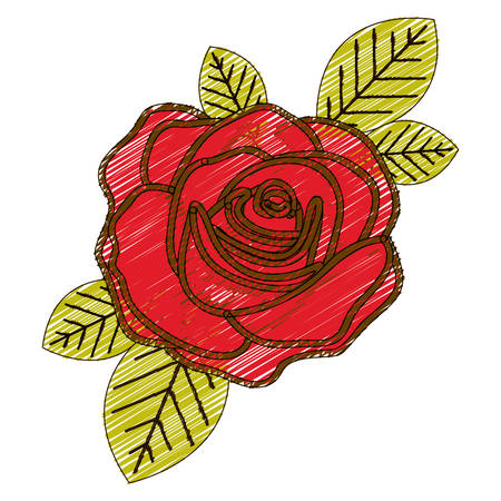 color pencil drawing of flowered red rose with leaves closeup vector illustration