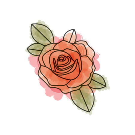 watercolor drawing of flowered red rose with leaves closeup vector illustration