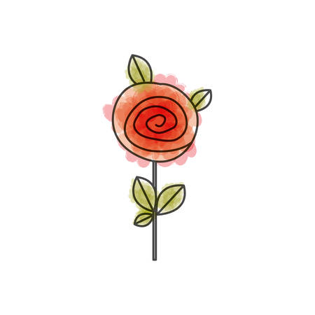 watercolor drawing of button red rose with leaves and stem vector illustration