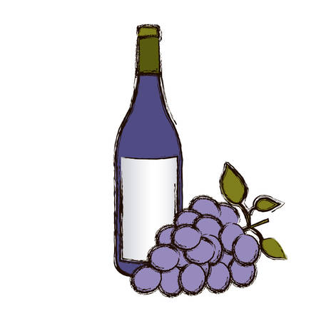 color blurred silhouette with bottle of wine and bunch of grapes vector illustration Illustration