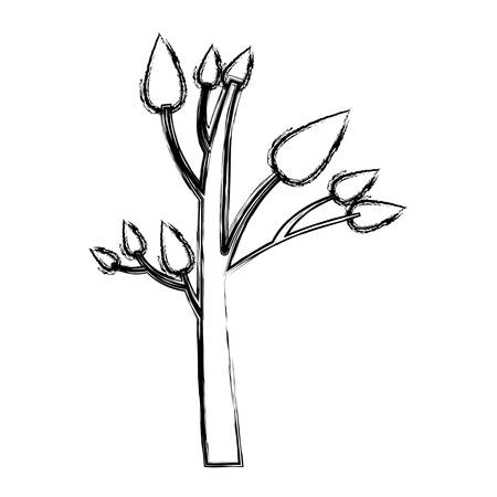 monochrome sketch of small tree with leafs vector illustration
