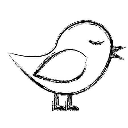 paloma caricatura: Monocromo boceto de aves en primer plano ilustración vectorial