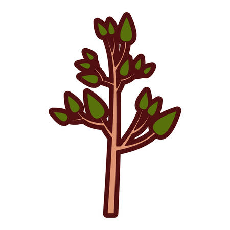 Colorful thick silhouette of tree with leafs vector illustration
