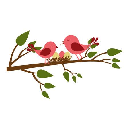 paloma caricatura: colorida silueta de los pájaros y el nido en la rama del árbol ilustración vectorial