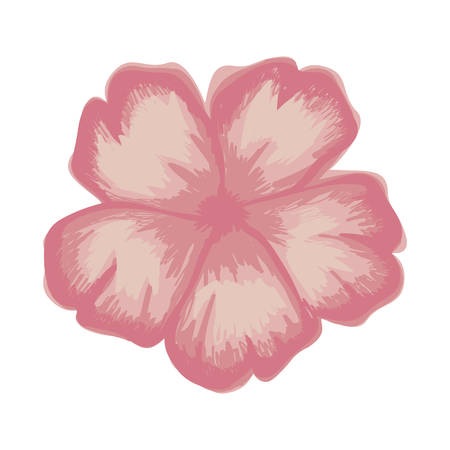 white background with watercolor of malva flower in pink vector illustration Illustration