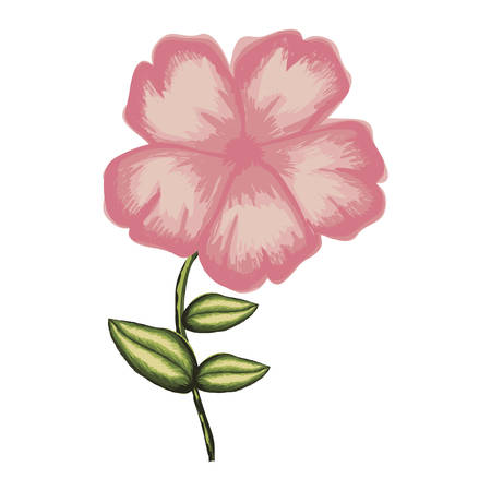 white background of watercolor malva flower in pink with stem and leaves vector illustration Illustration