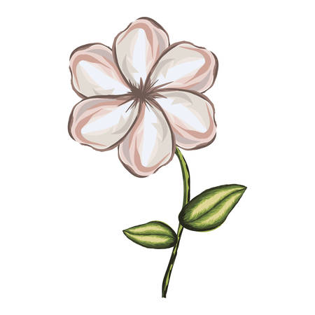 white background of watercolor malva flower with stem and leaves vector illustration