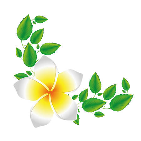 fondo blanco de flor de malva realista con hojas ilustración vectorial