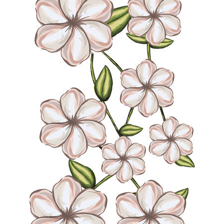 watercolor background of white malva flower with stem and leaves vector illustration