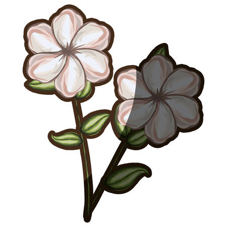 A watercolor pair silhouette shading of single malva flower vector illustration Illustration