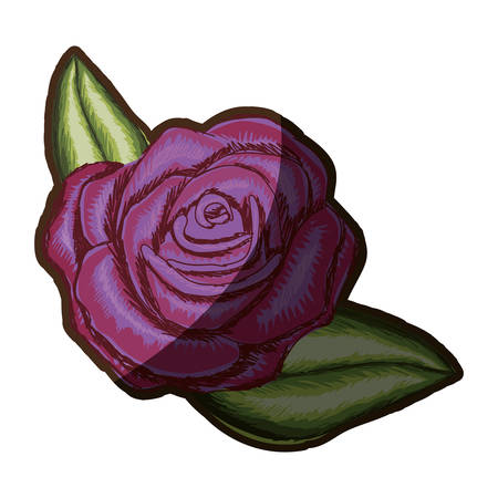 A colorful realistic flowered rose and leaves with shading vector illustration