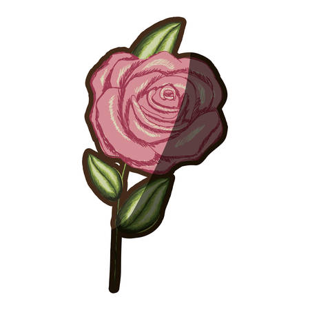 A colorful realistic flowered rose with leaves and stem vector illustration