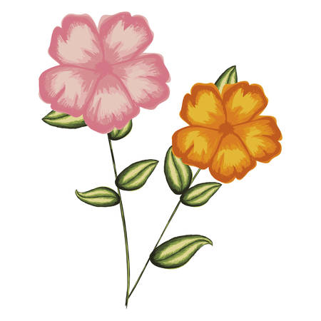 watercolor silhouette of malva plant with flowers pink and orange vector illustration