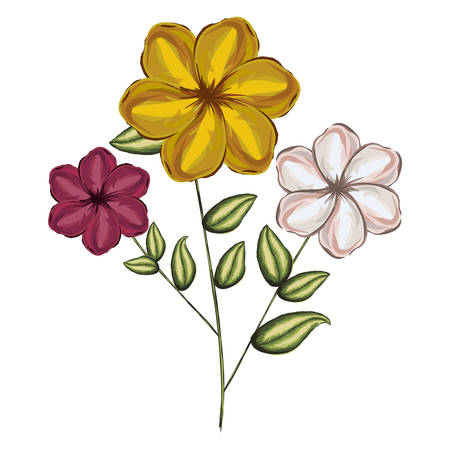 pistil: watercolor silhouette of malva plant with flowers red yellow and white vector illustration