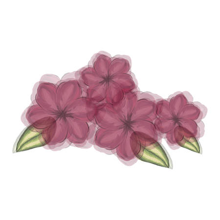 watercolor silhouette of malva plant with flowers red and leaves with transparent shadow vector illustration
