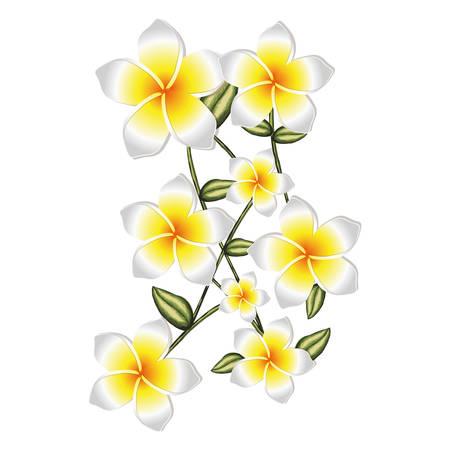 Beste Blätter Färben Blumen Zeitgenössisch - Beispielzusammenfassung ...
