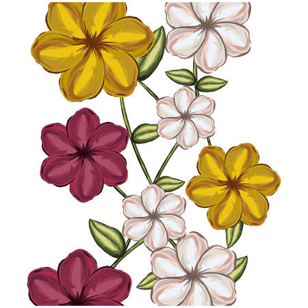 colorful background of malva flowers in colors yellow white and red vector illustration