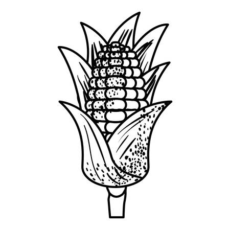 sweetcorn: black silhouette of corn cob with leaves vector illustration