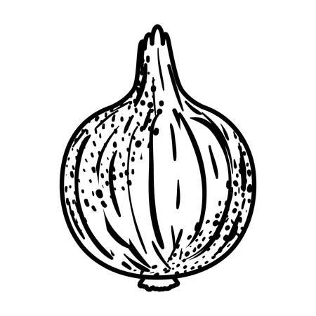 black silhouette of onion in closeup vector illustration Çizim