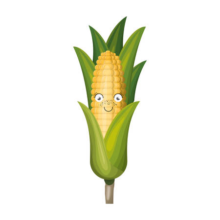 corncob: white background with realistic corn cob caricature with leaves vector illustration Illustration