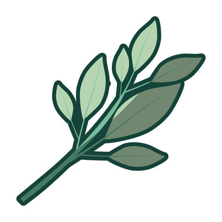 colorful thick contour of tree branch with leaves vector illustration