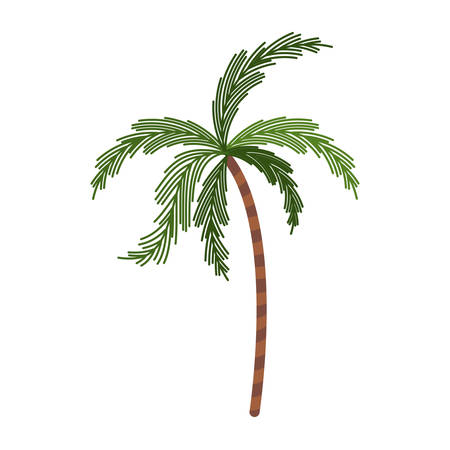 subtropical plants: color silhouette with palm tree vector illustration