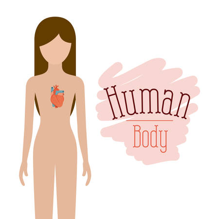 colorful silhouette female person with hearth system human body vector illustration Illustration