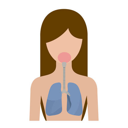 lung bronchus: colorful silhouette half body female person with respiratory system human body vector illustration