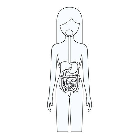 sketch silhouette of female person with digestive system human