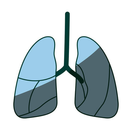 pleura: blue color shading silhouette respiratory system vector illustration