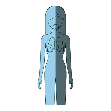 blue color shading silhouette female person with respiratory system human body vector illustration Illustration
