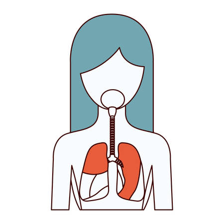 color sections silhouette half body female person with respiratory system vector illustration Illustration