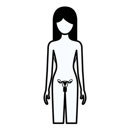 black silhouette thick contour of female person with reproductive system human body vector illustration