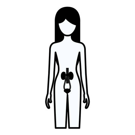 zwarte silhouet dikke contour van vrouwelijke persoon met nier-systeem menselijk lichaam vectorillustratie