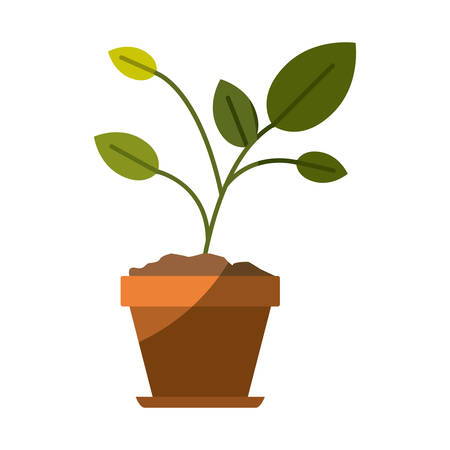colorful silhouette of plant in flower pot with half shadow vector illustration