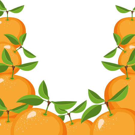 white background with border of oranges fruits vector illustration