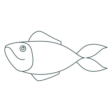 monochrome contour of salmon fish vector illustration