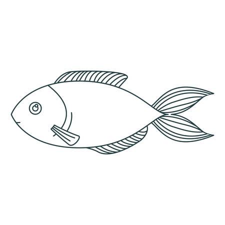 monochrome contour of trout fish vector illustration