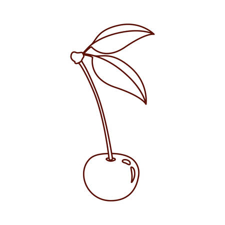 monochrome silhouette of cherry with stem and leaves vector illustration
