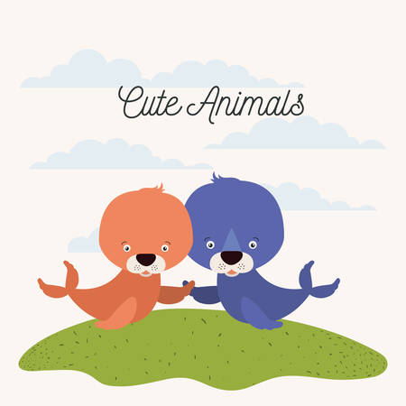 antarctic: white background with color scene couple cute seals aquatic animals in grass vector illustration Illustration