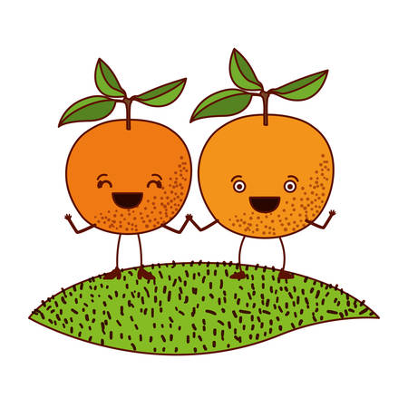 white background with pair of orange fruits caricature over grass vector illustration