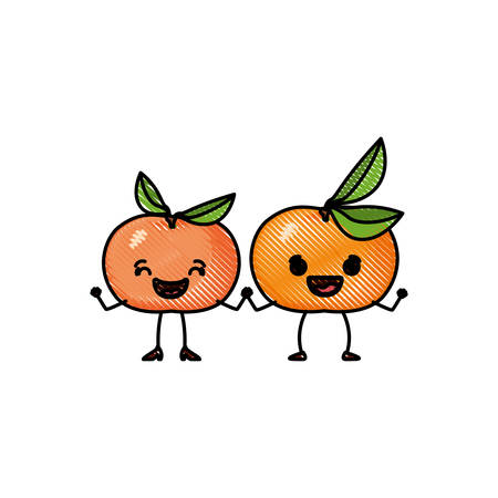 white background of colored crayon silhouette of realistic pair of tangerine fruits caricature vector illustration