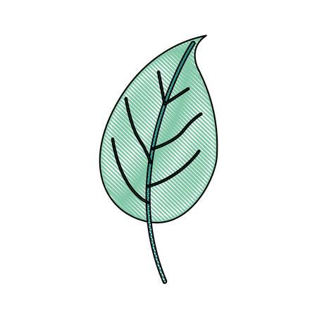 Silueta De Crayón De Color Verde Claro De Ramas Con Ilustración De ...