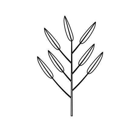 white background with monochrome silhouette of branch with leaves lanceolate vector illustration