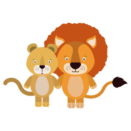 lion tail: white background with colorful caricature couple cute lion and lioness animals vector illustration
